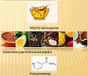 The_Elluyi_ingredients.jpg